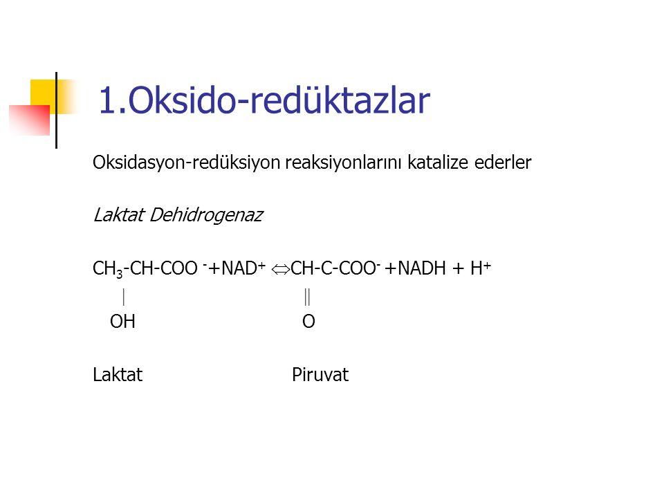1.Oksido-redüktazlar