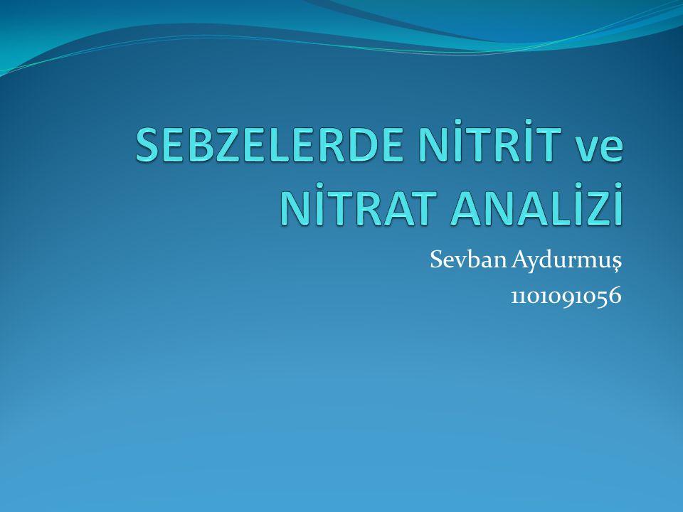 SEBZELERDE NİTRİT ve NİTRAT ANALİZİ