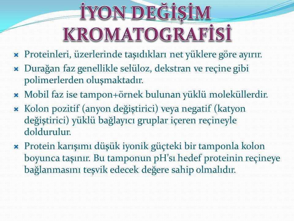 İYON DEĞİŞİM KROMATOGRAFİSİ