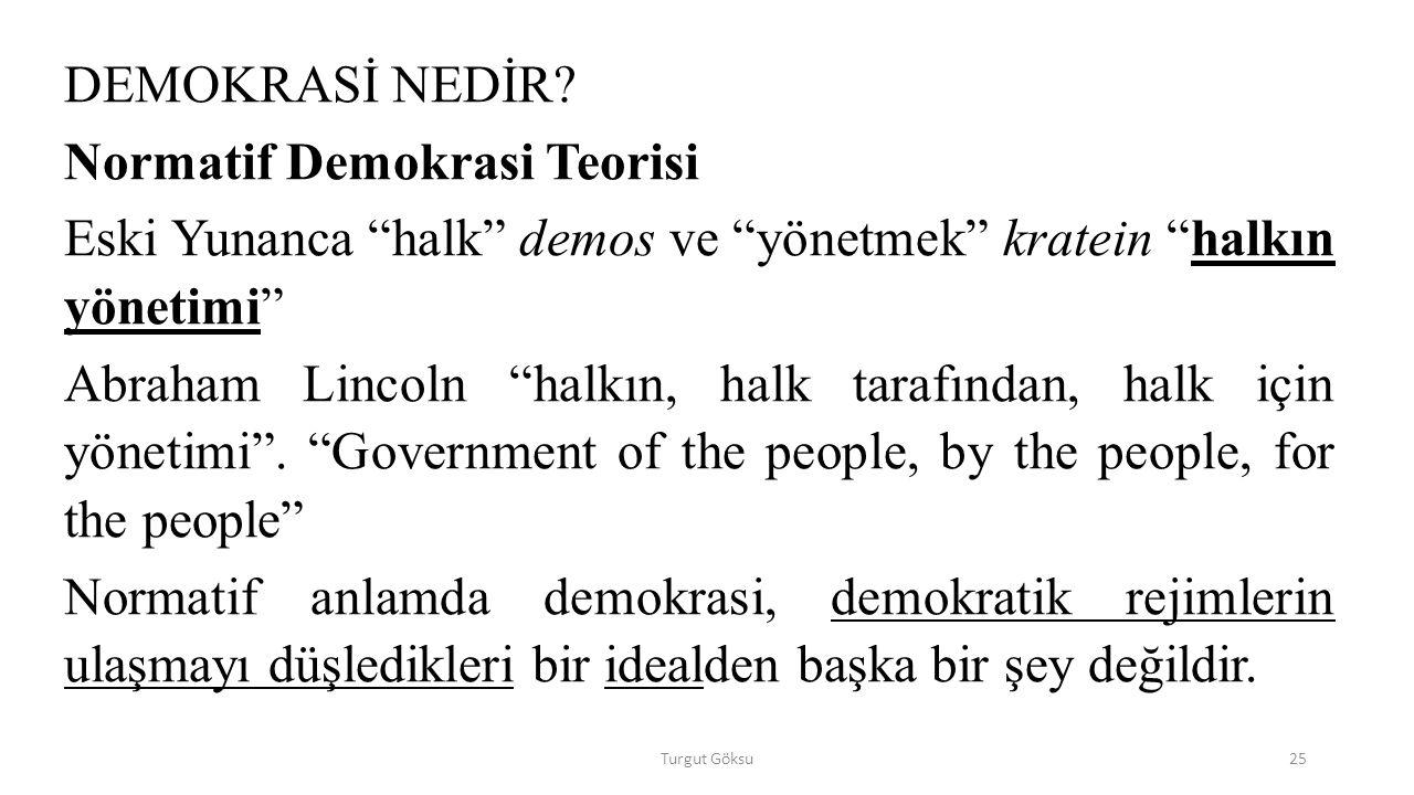 Normatif Demokrasi Teorisi