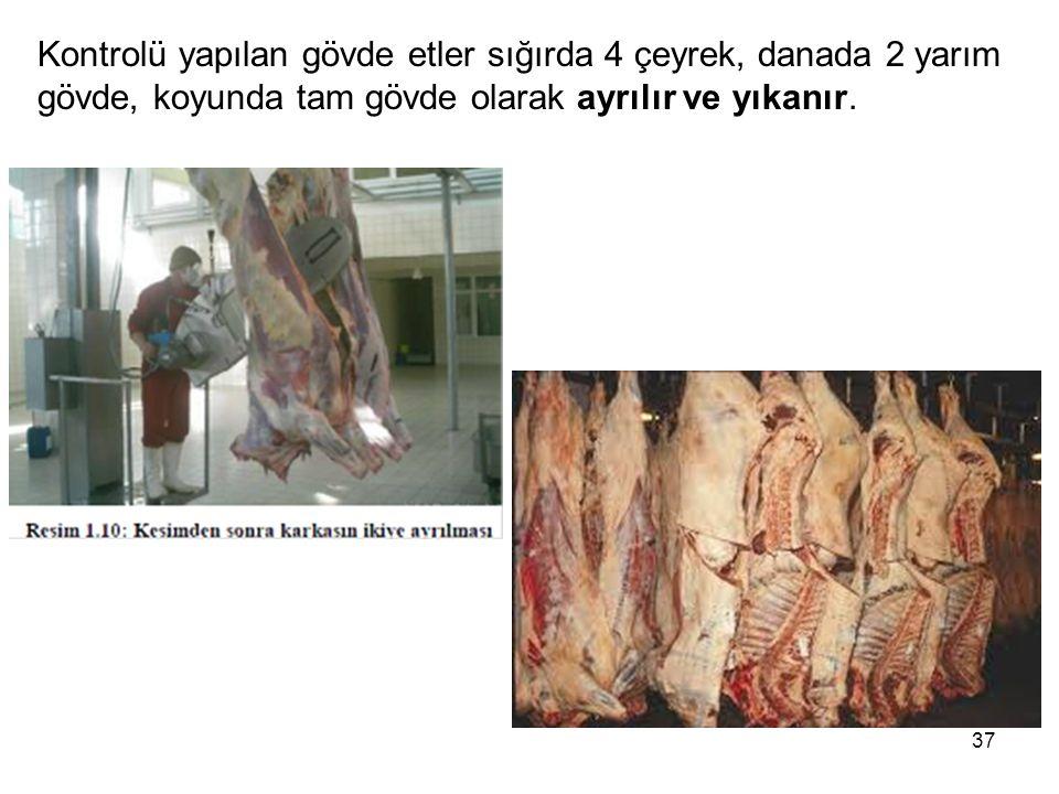 Kontrolü yapılan gövde etler sığırda 4 çeyrek, danada 2 yarım gövde, koyunda tam gövde olarak ayrılır ve yıkanır.