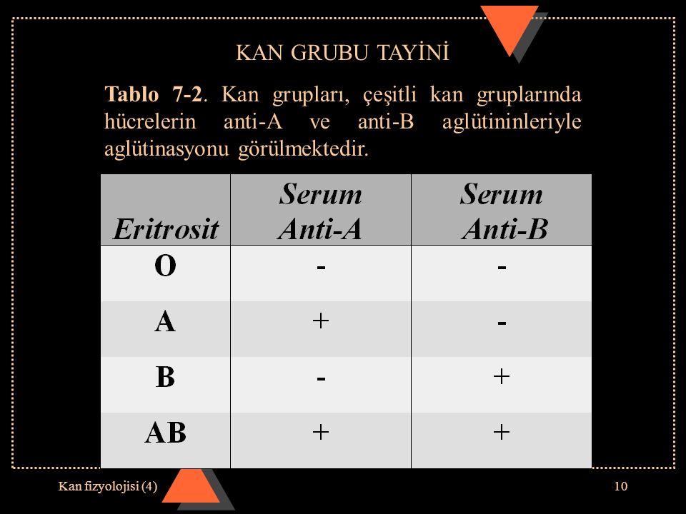 KAN GRUBU TAYİNİ Tablo 7-2. Kan grupları, çeşitli kan gruplarında hücrelerin anti-A ve anti-B aglütininleriyle aglütinasyonu görülmektedir.