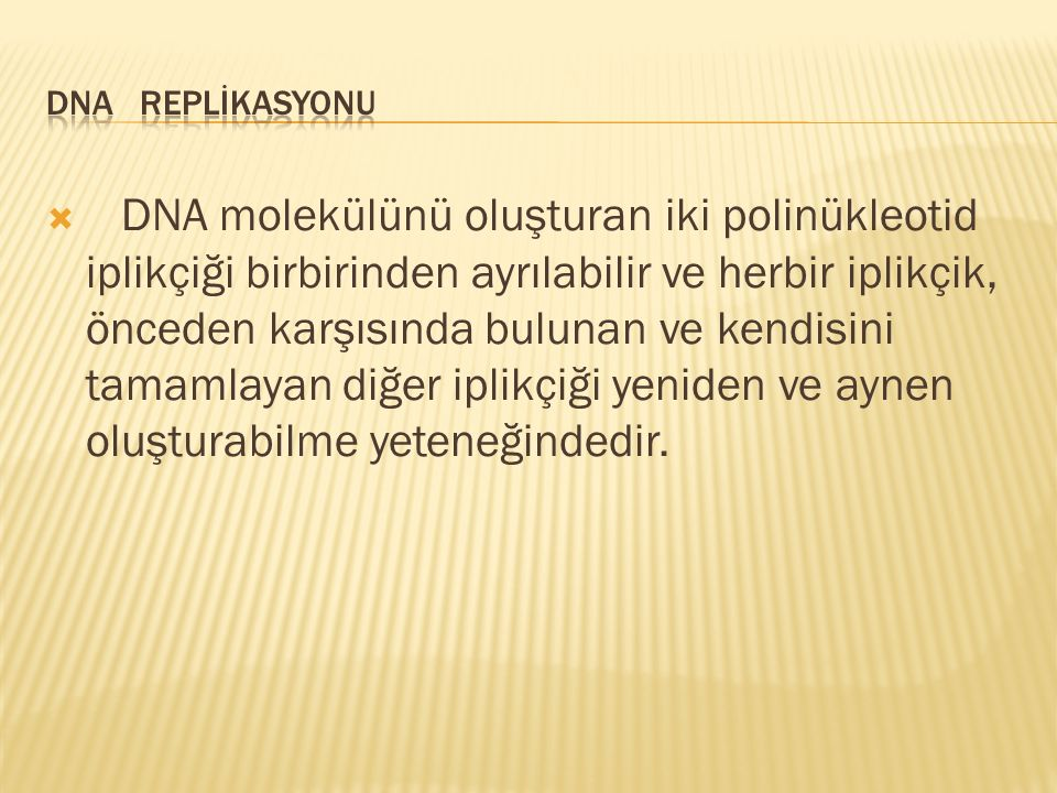 DNA REPLİKASYONU