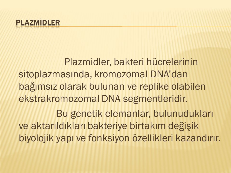PLAZMİDLER