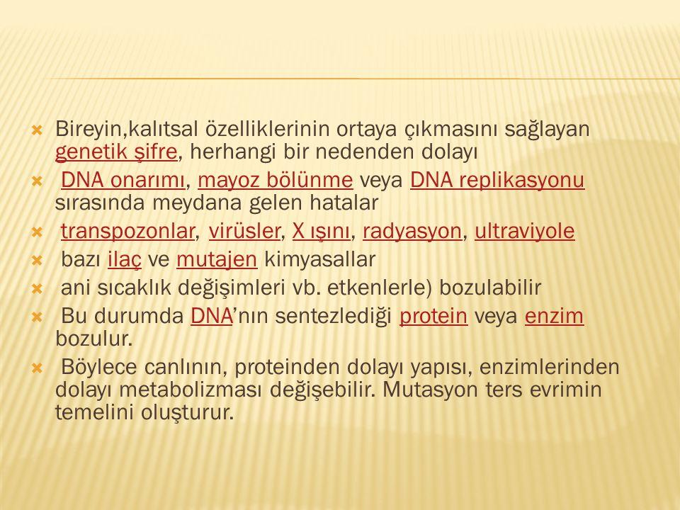 Bireyin,kalıtsal özelliklerinin ortaya çıkmasını sağlayan genetik şifre, herhangi bir nedenden dolayı