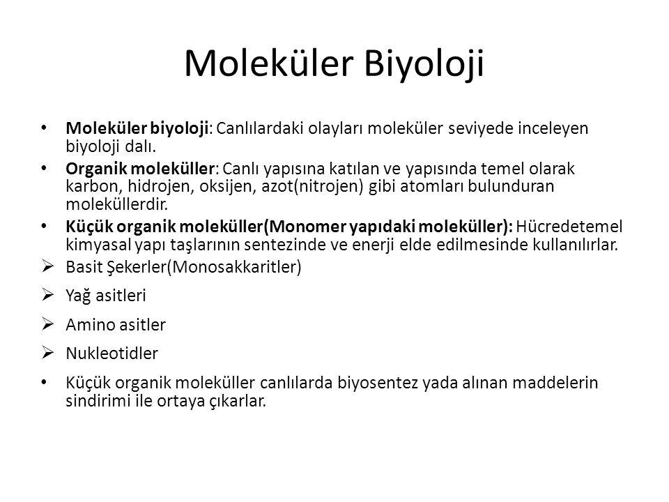 Moleküler Biyoloji Moleküler biyoloji: Canlılardaki olayları moleküler seviyede inceleyen biyoloji dalı.