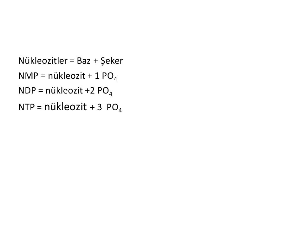 Nükleozitler = Baz + Şeker