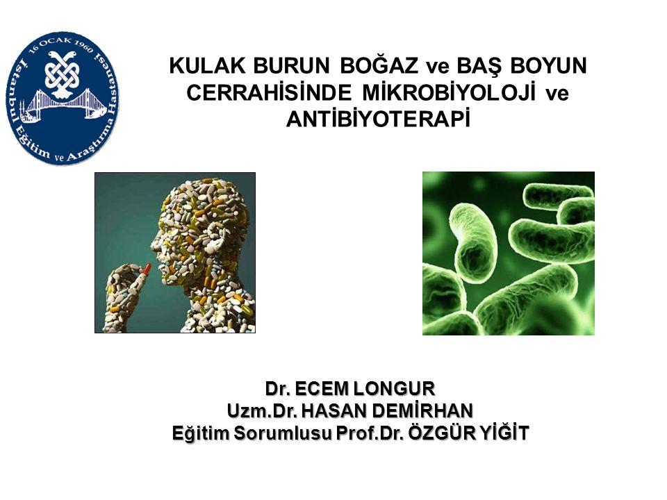Eğitim Sorumlusu Prof.Dr. ÖZGÜR YİĞİT