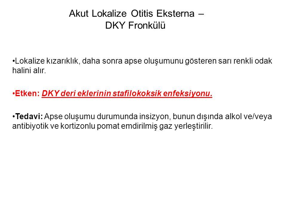 Akut Lokalize Otitis Eksterna – DKY Fronkülü