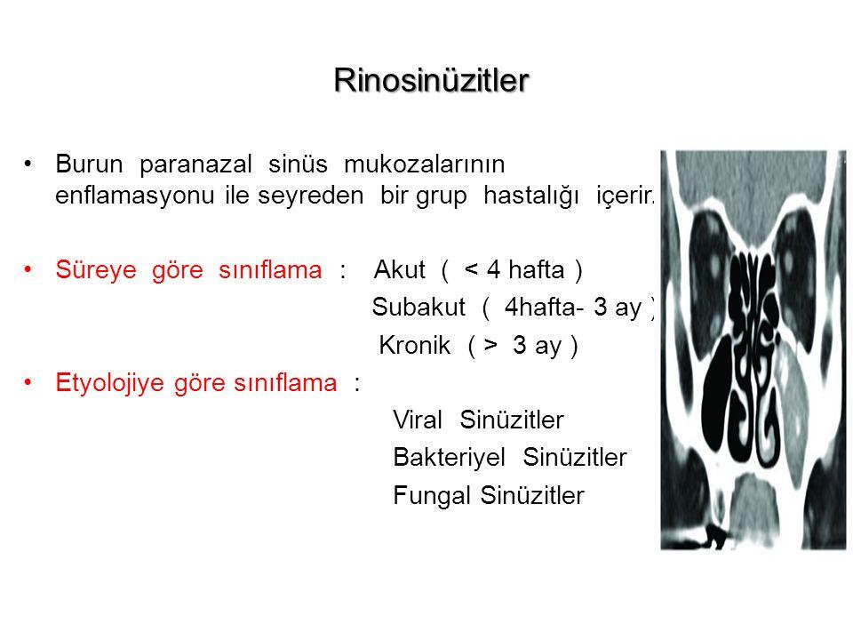 Rinosinüzitler Burun paranazal sinüs mukozalarının enflamasyonu ile seyreden bir grup hastalığı içerir.