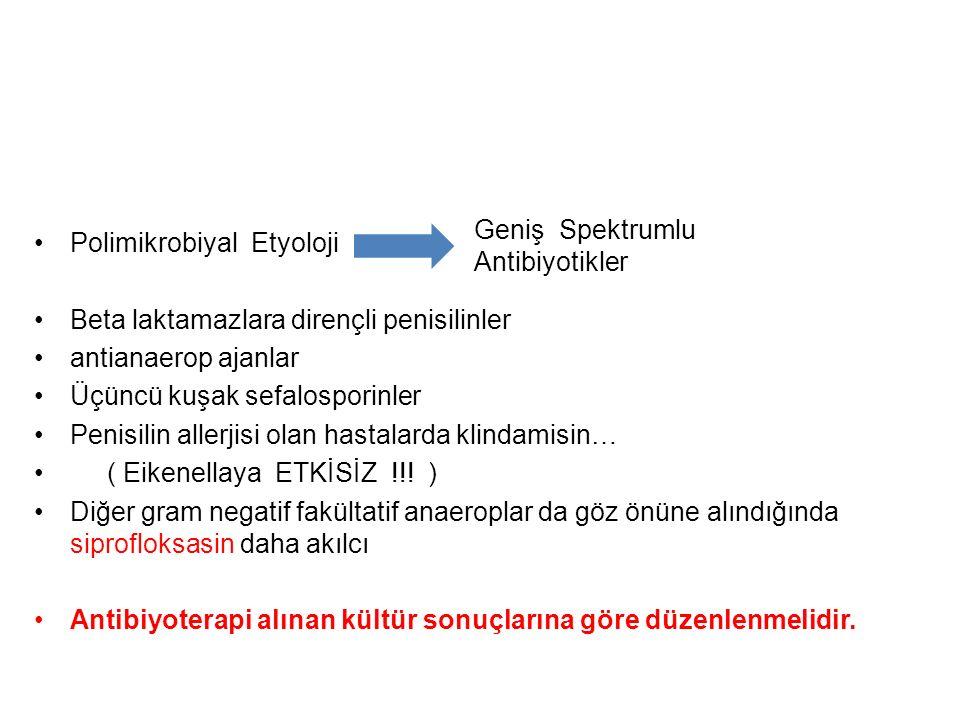 Polimikrobiyal Etyoloji