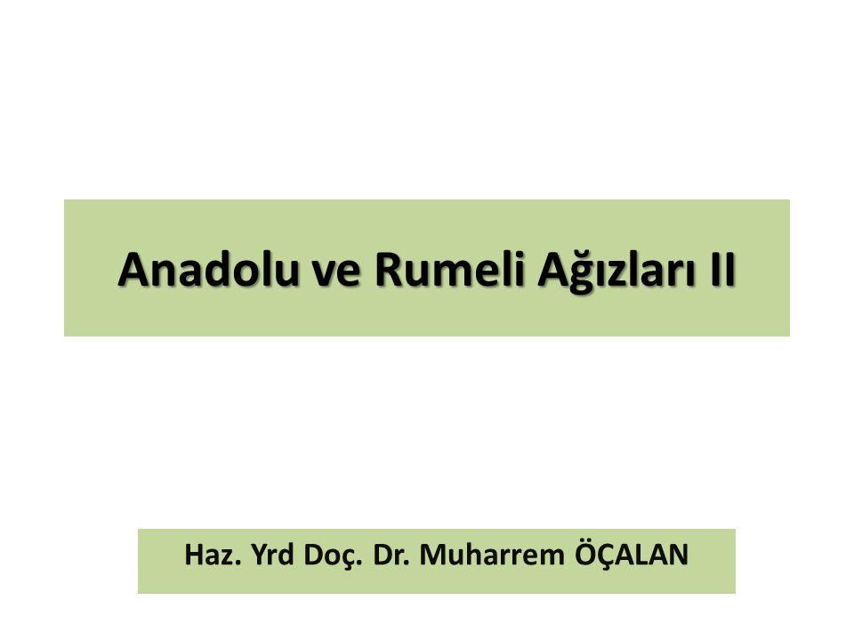 Anadolu ve Rumeli Ağızları II