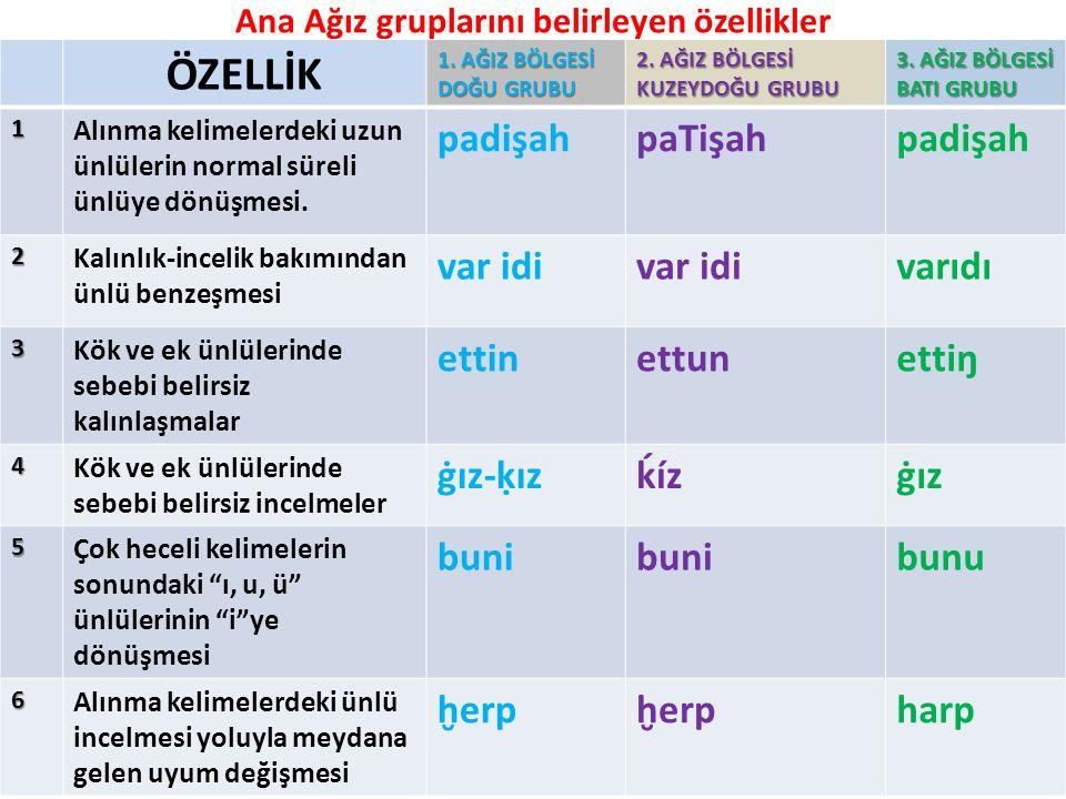 Ana Ağız gruplarını belirleyen özellikler