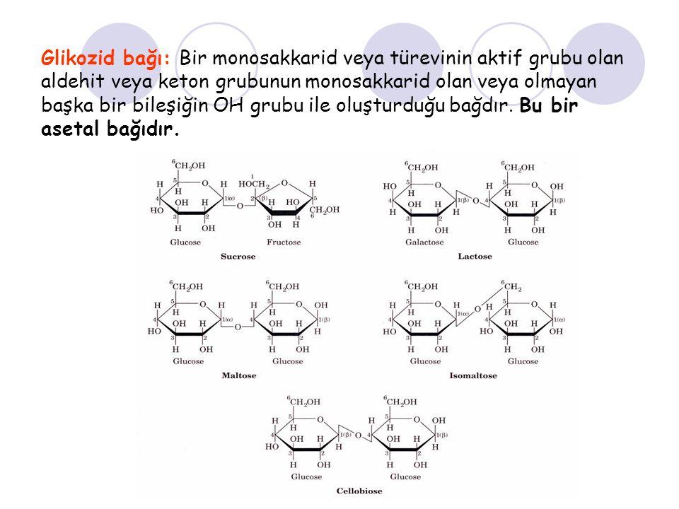 Glikozid bağı: Bir monosakkarid veya türevinin aktif grubu olan aldehit veya keton grubunun monosakkarid olan veya olmayan başka bir bileşiğin OH grubu ile oluşturduğu bağdır.