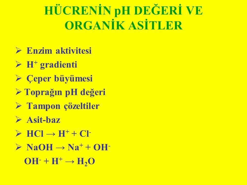 HÜCRENİN pH DEĞERİ VE ORGANİK ASİTLER