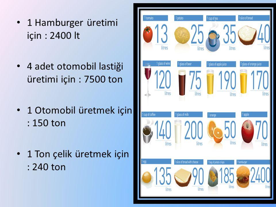 1 Hamburger üretimi için : 2400 lt