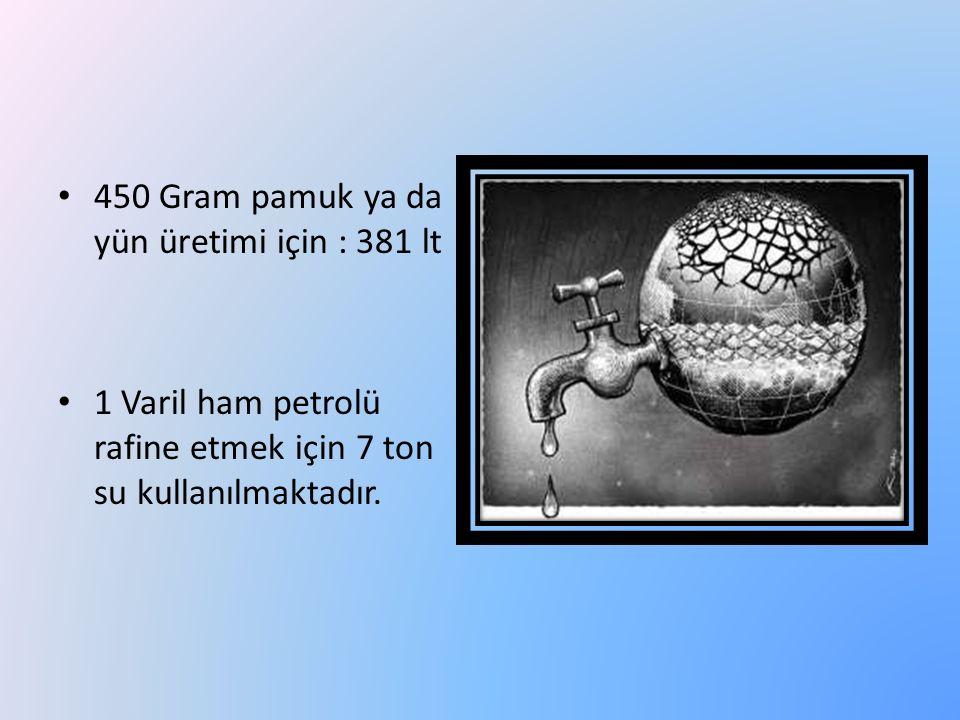 450 Gram pamuk ya da yün üretimi için : 381 lt