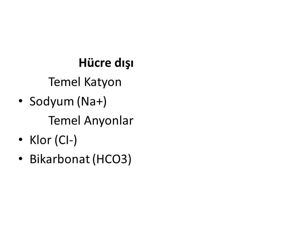 Hücre dışı Temel Katyon Sodyum (Na+) Temel Anyonlar Klor (CI-) Bikarbonat (HCO3)