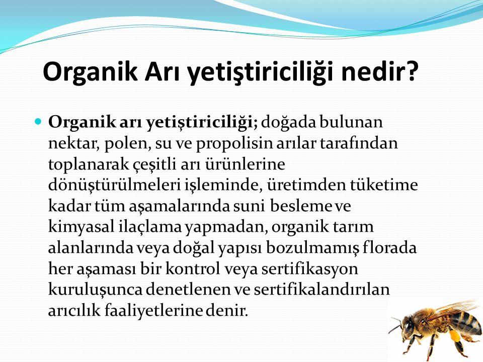 Organik Arı yetiştiriciliği nedir