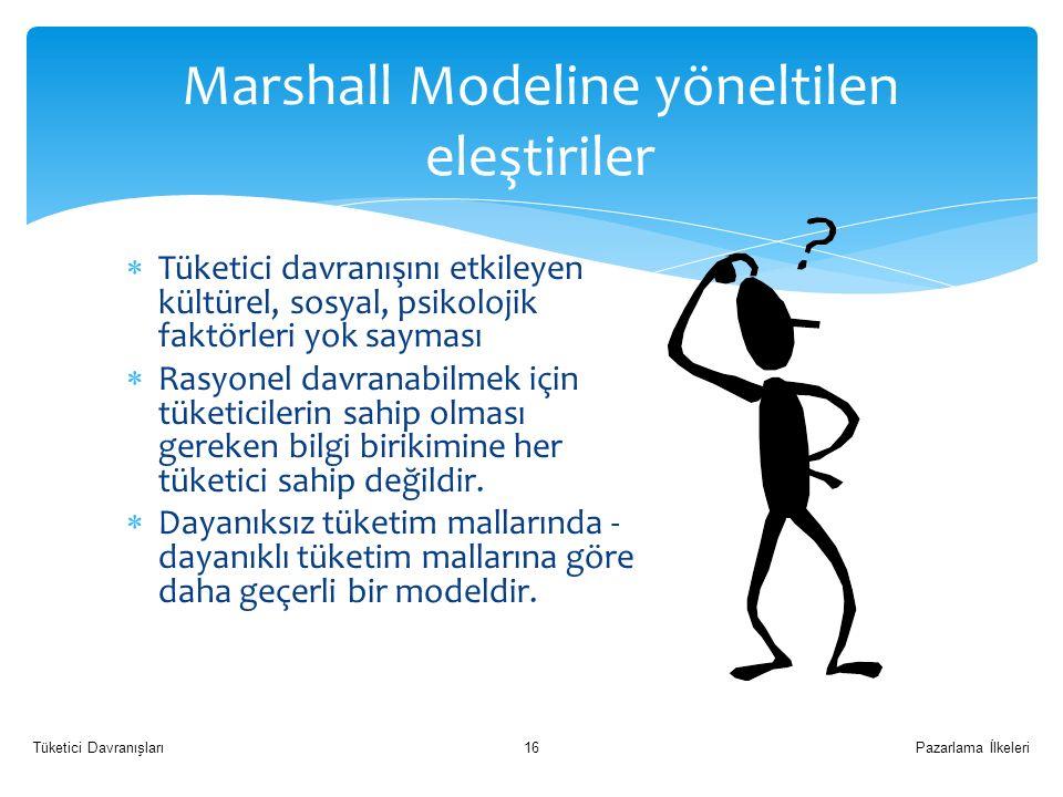Marshall Modeline yöneltilen eleştiriler