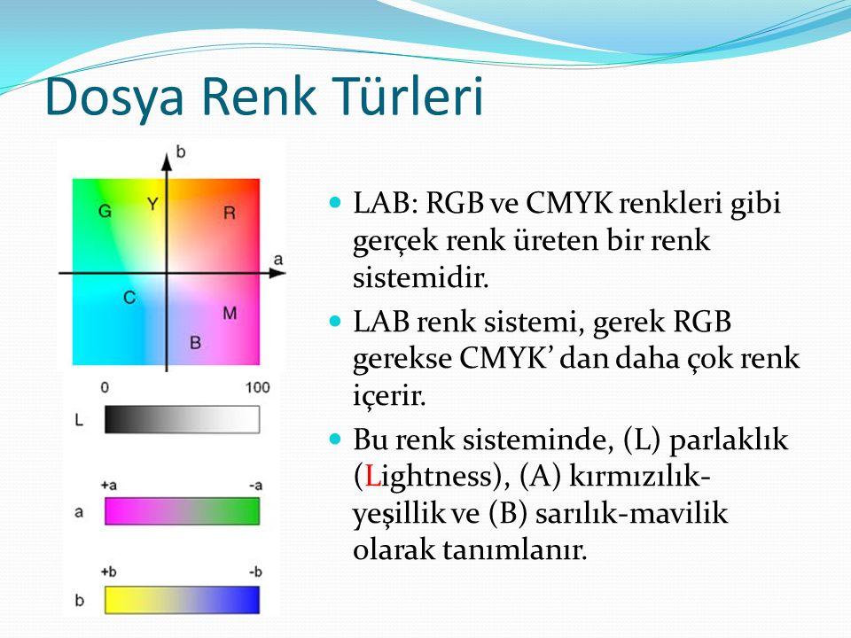 Dosya Renk Türleri LAB: RGB ve CMYK renkleri gibi gerçek renk üreten bir renk sistemidir.