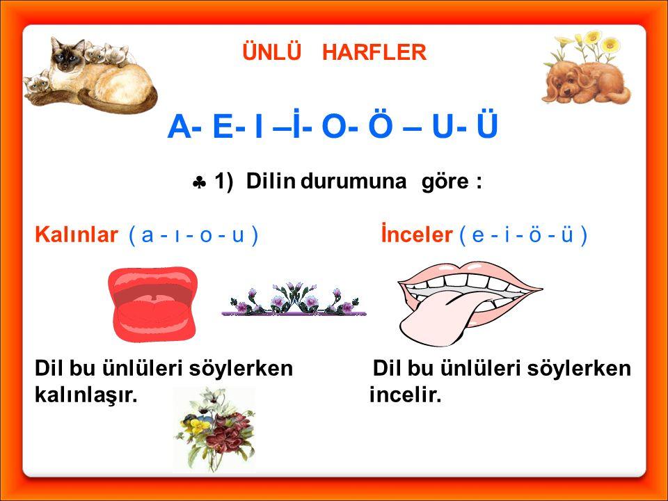  1) Dilin durumuna göre :
