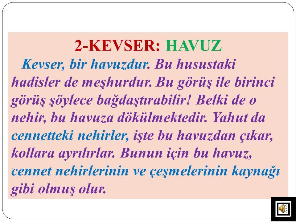 2-KEVSER: HAVUZ