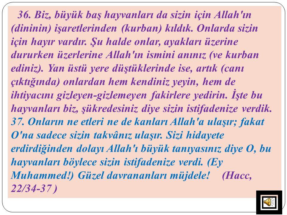 36. Biz, büyük baş hayvanları da sizin için Allah ın (dininin) işaretlerinden (kurban) kıldık.