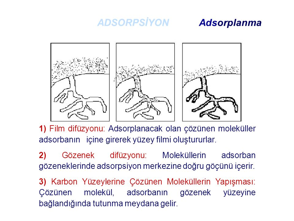 ADSORPSİYON Adsorplanma