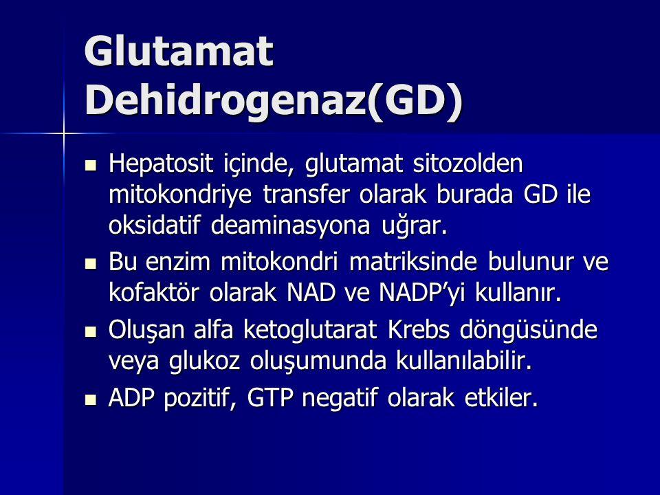 Glutamat Dehidrogenaz(GD)