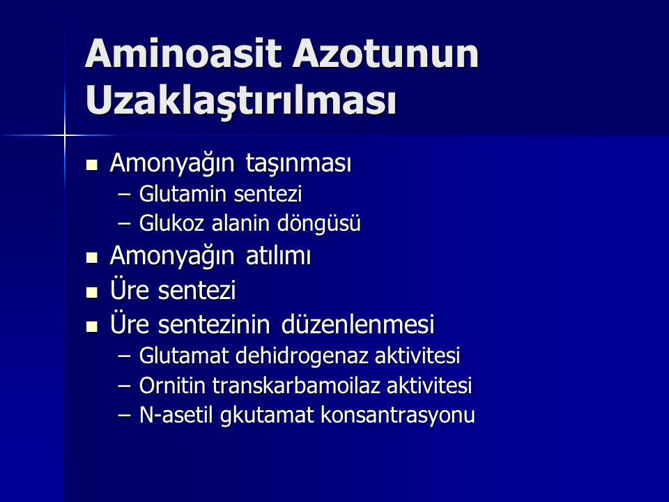 Aminoasit Azotunun Uzaklaştırılması
