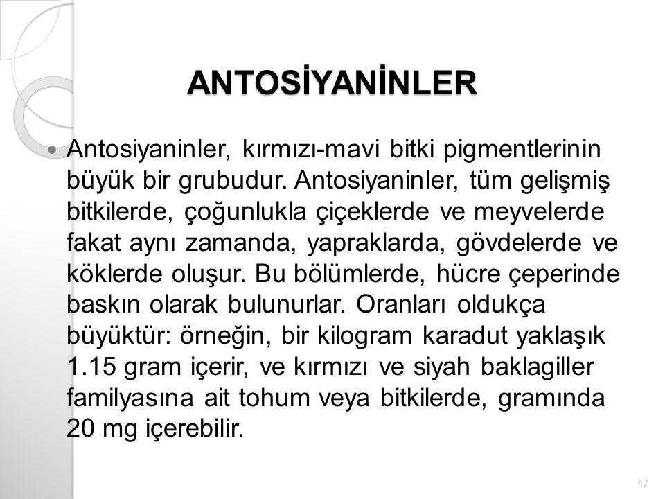 ANTOSİYANİNLER