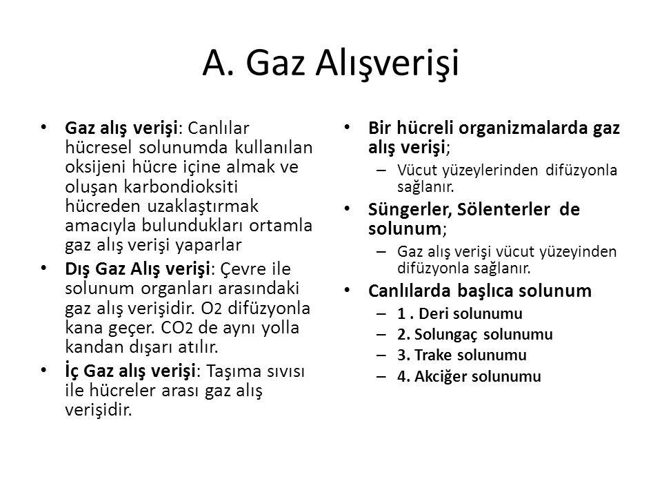 A. Gaz Alışverişi