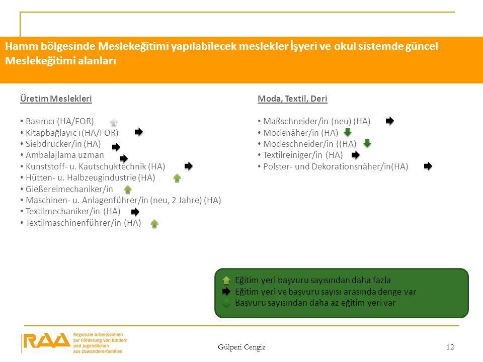 Hamm bölgesinde Meslekeğitimi yapılabilecek meslekler İşyeri ve okul sistemde güncel Meslekeğitimi alanları