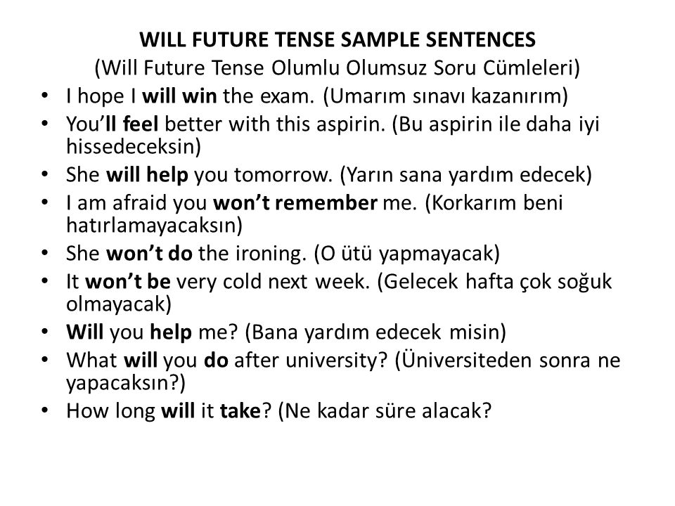 WILL FUTURE TENSE SAMPLE SENTENCES