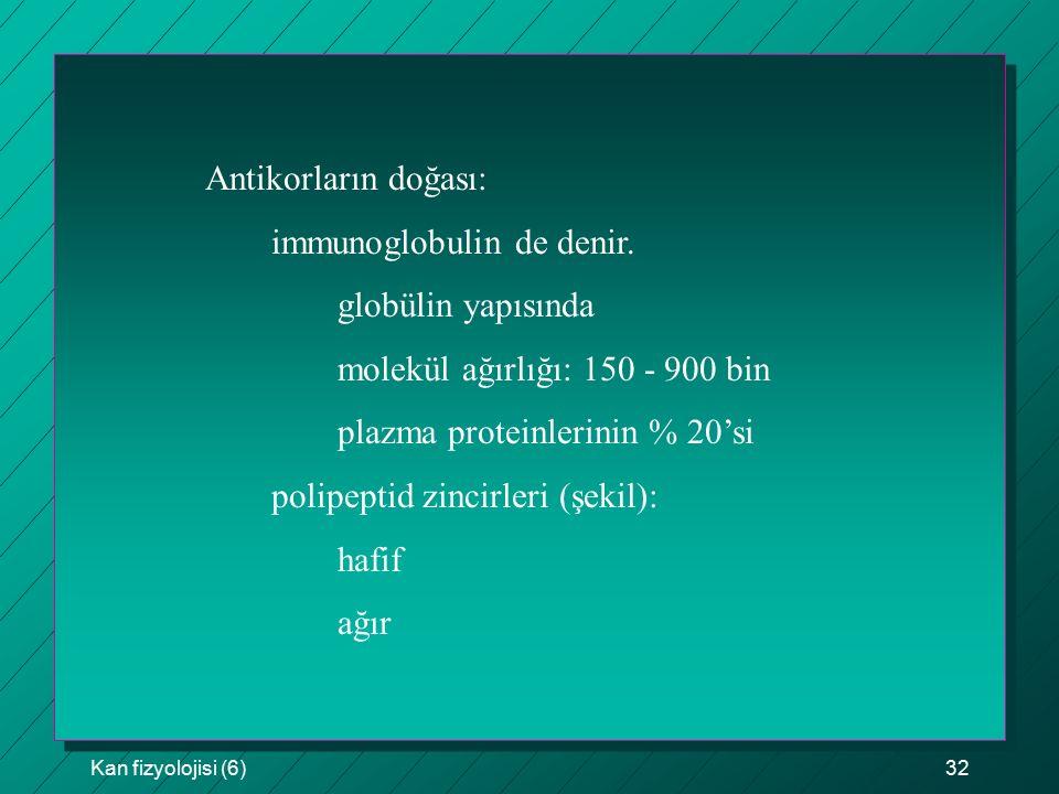 immunoglobulin de denir. globülin yapısında