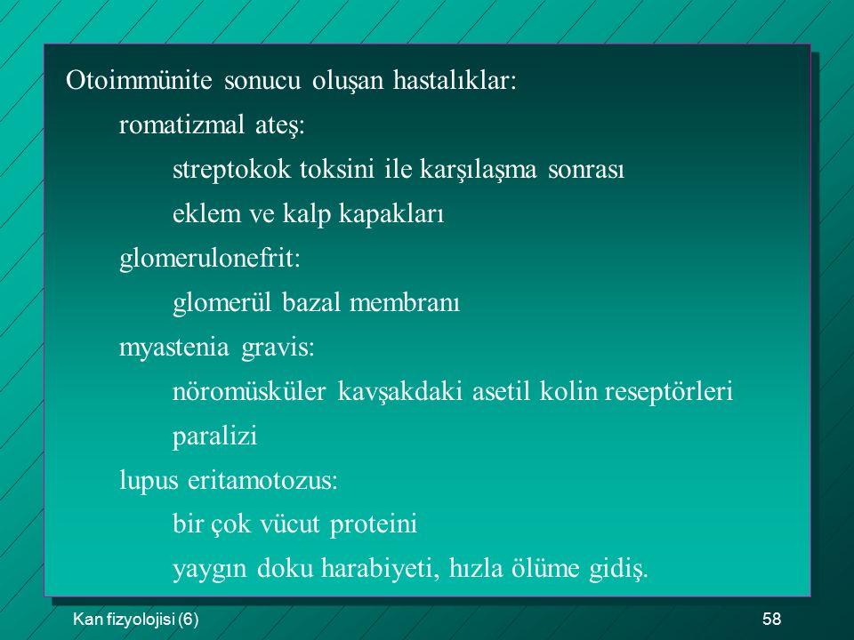 Otoimmünite sonucu oluşan hastalıklar: romatizmal ateş: