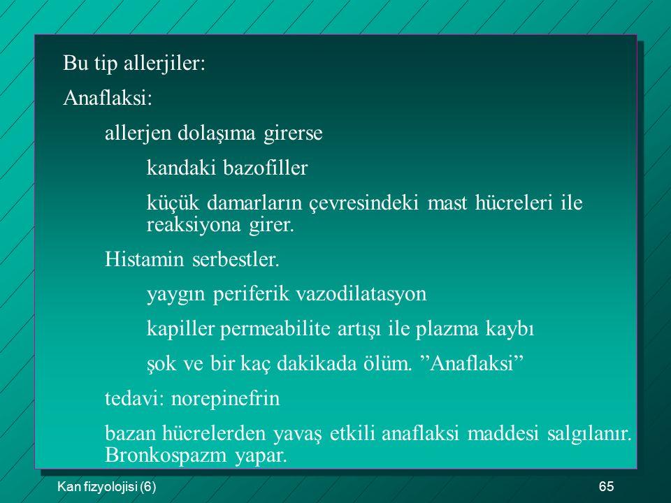 allerjen dolaşıma girerse kandaki bazofiller