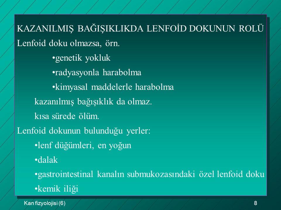 KAZANILMIŞ BAĞIŞIKLIKDA LENFOİD DOKUNUN ROLÜ