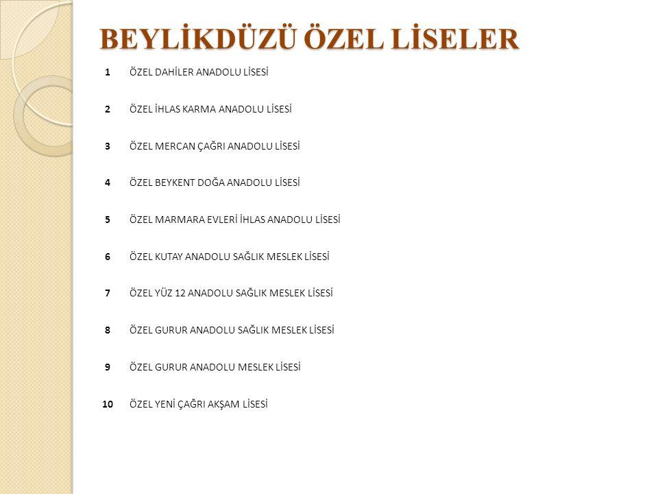 BEYLİKDÜZÜ ÖZEL LİSELER