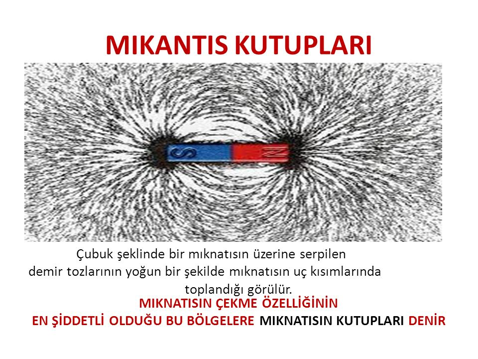 MIKANTIS KUTUPLARI