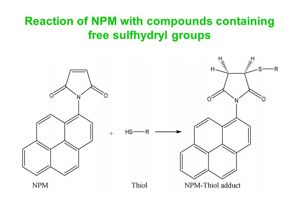 Reaction of NPM with compounds containing free sulfhydryl groups