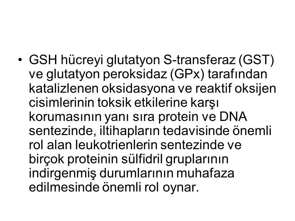 GSH hücreyi glutatyon S-transferaz (GST) ve glutatyon peroksidaz (GPx) tarafından katalizlenen oksidasyona ve reaktif oksijen cisimlerinin toksik etkilerine karşı korumasının yanı sıra protein ve DNA sentezinde, iltihapların tedavisinde önemli rol alan leukotrienlerin sentezinde ve birçok proteinin sülfidril gruplarının indirgenmiş durumlarının muhafaza edilmesinde önemli rol oynar.