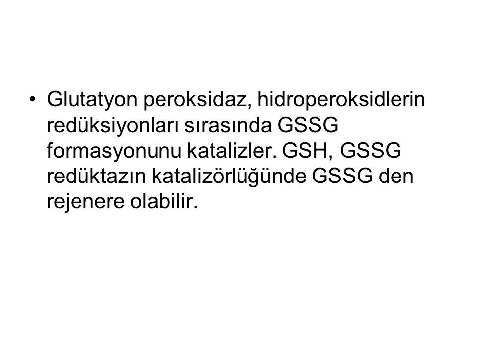 Glutatyon peroksidaz, hidroperoksidlerin redüksiyonları sırasında GSSG formasyonunu katalizler.