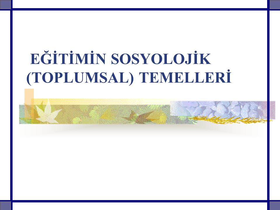 EĞİTİMİN SOSYOLOJİK (TOPLUMSAL) TEMELLERİ