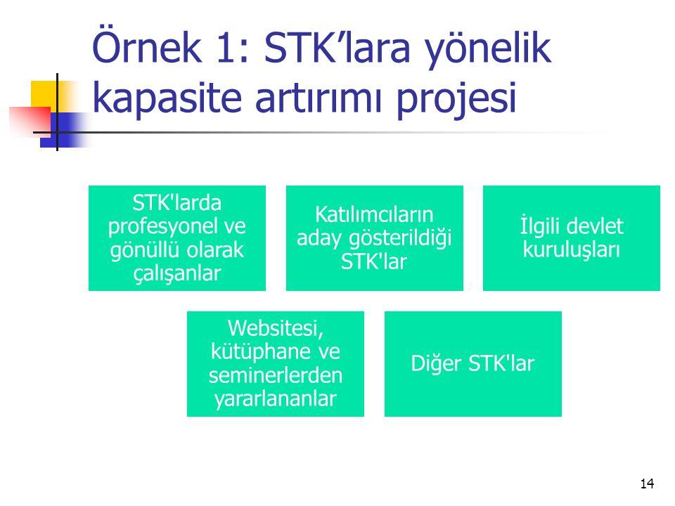 Örnek 1: STK'lara yönelik kapasite artırımı projesi