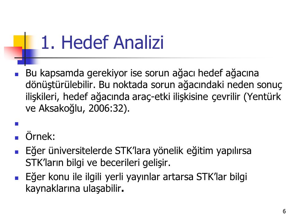 1. Hedef Analizi