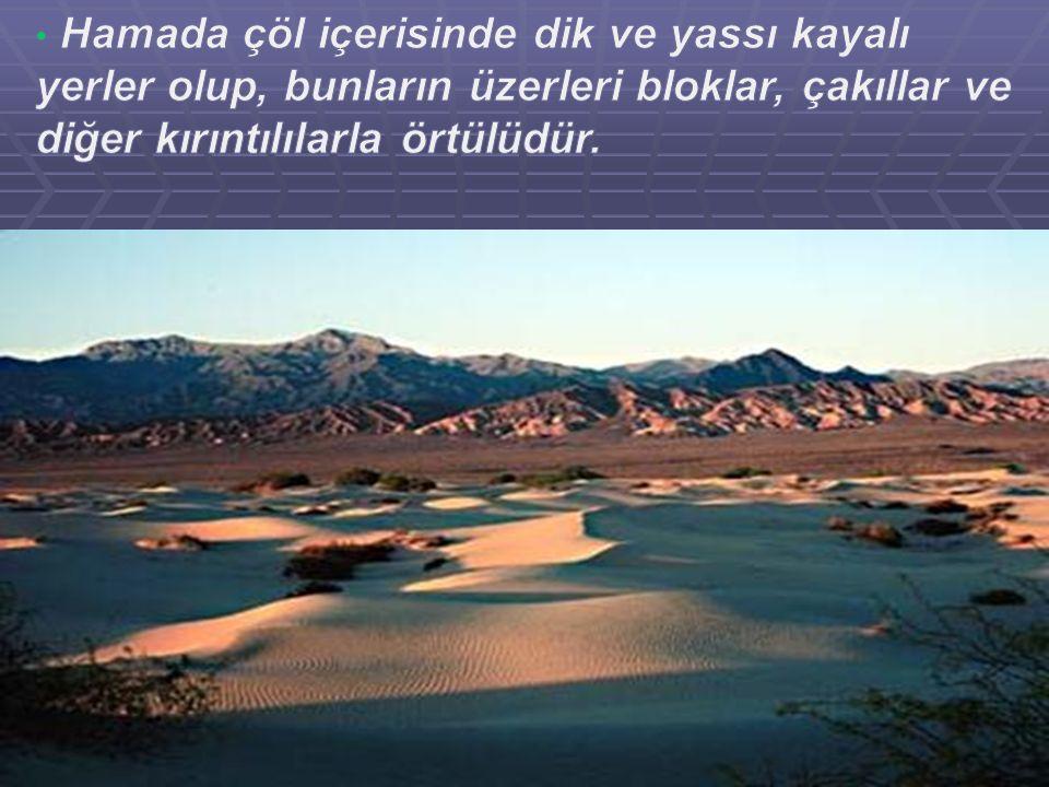 Hamada çöl içerisinde dik ve yassı kayalı yerler olup, bunların üzerleri bloklar, çakıllar ve diğer kırıntılılarla örtülüdür.