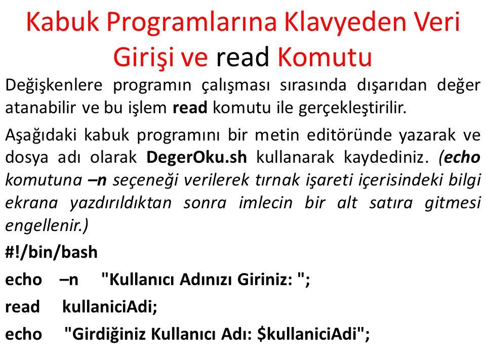 Kabuk Programlarına Klavyeden Veri Girişi ve read Komutu