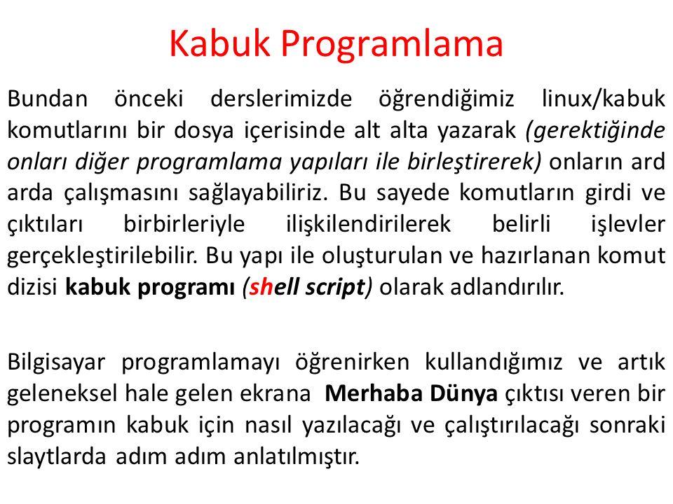 Kabuk Programlama